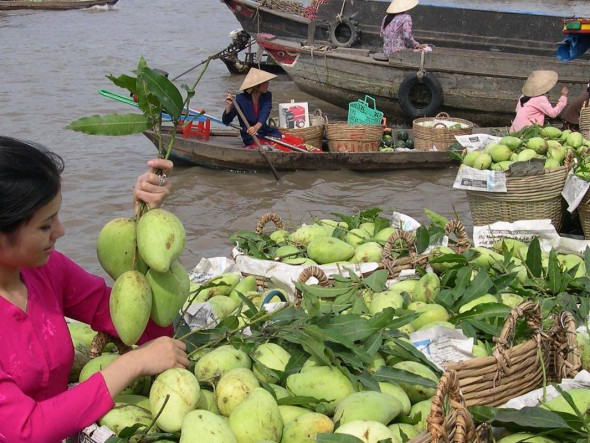 Mekong Delta / Daily departure